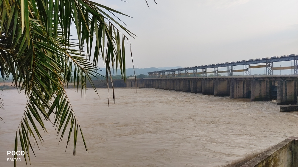 Dam, Flood,water,dam,tree,