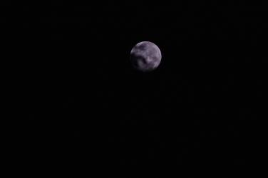 Moon,night,white moon, full moon,kerala,