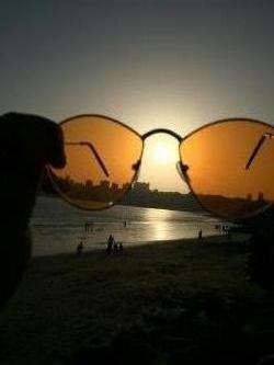 Sunny, #sunny #glasses